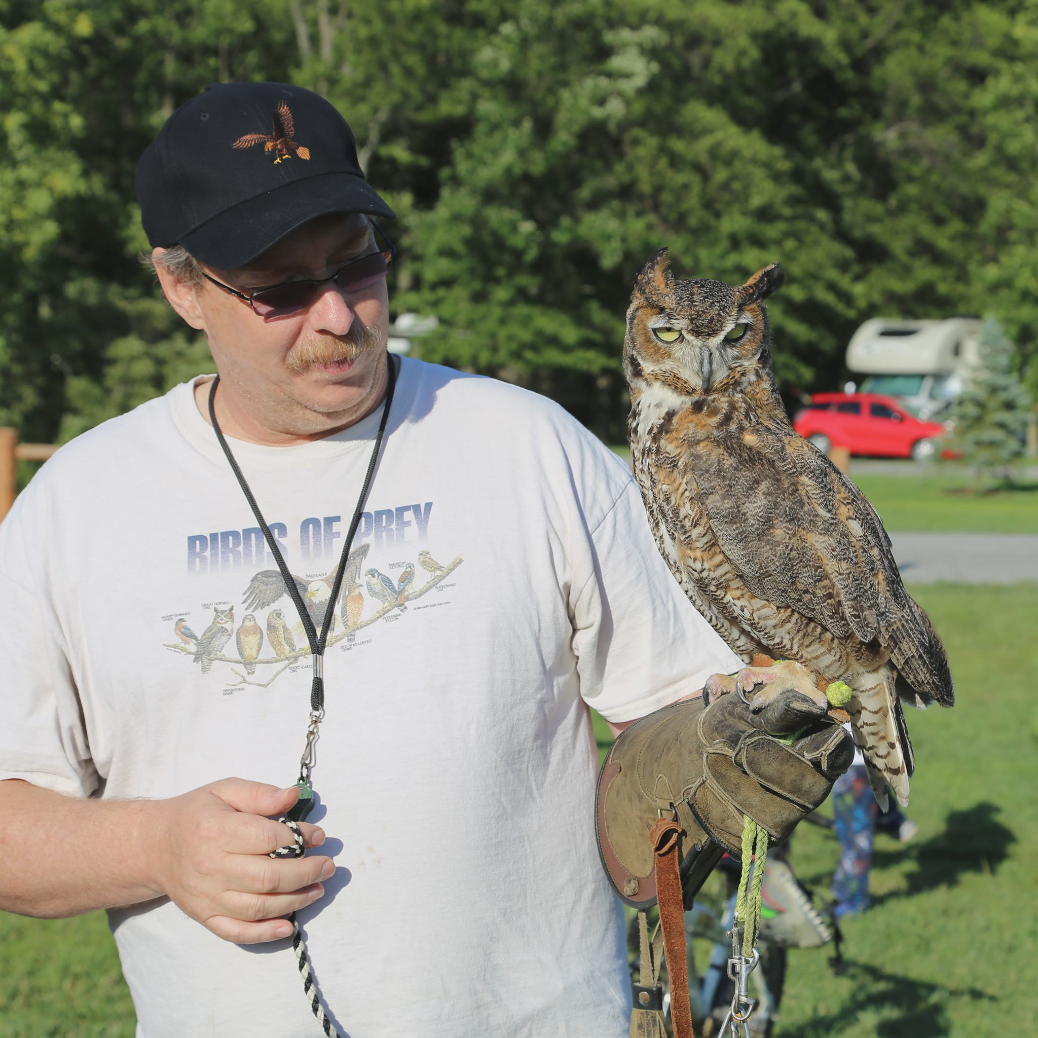 Man holding an owl on his hand