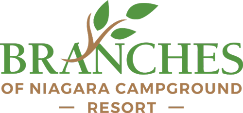 Branches of Niagara Logo, link to the home page.