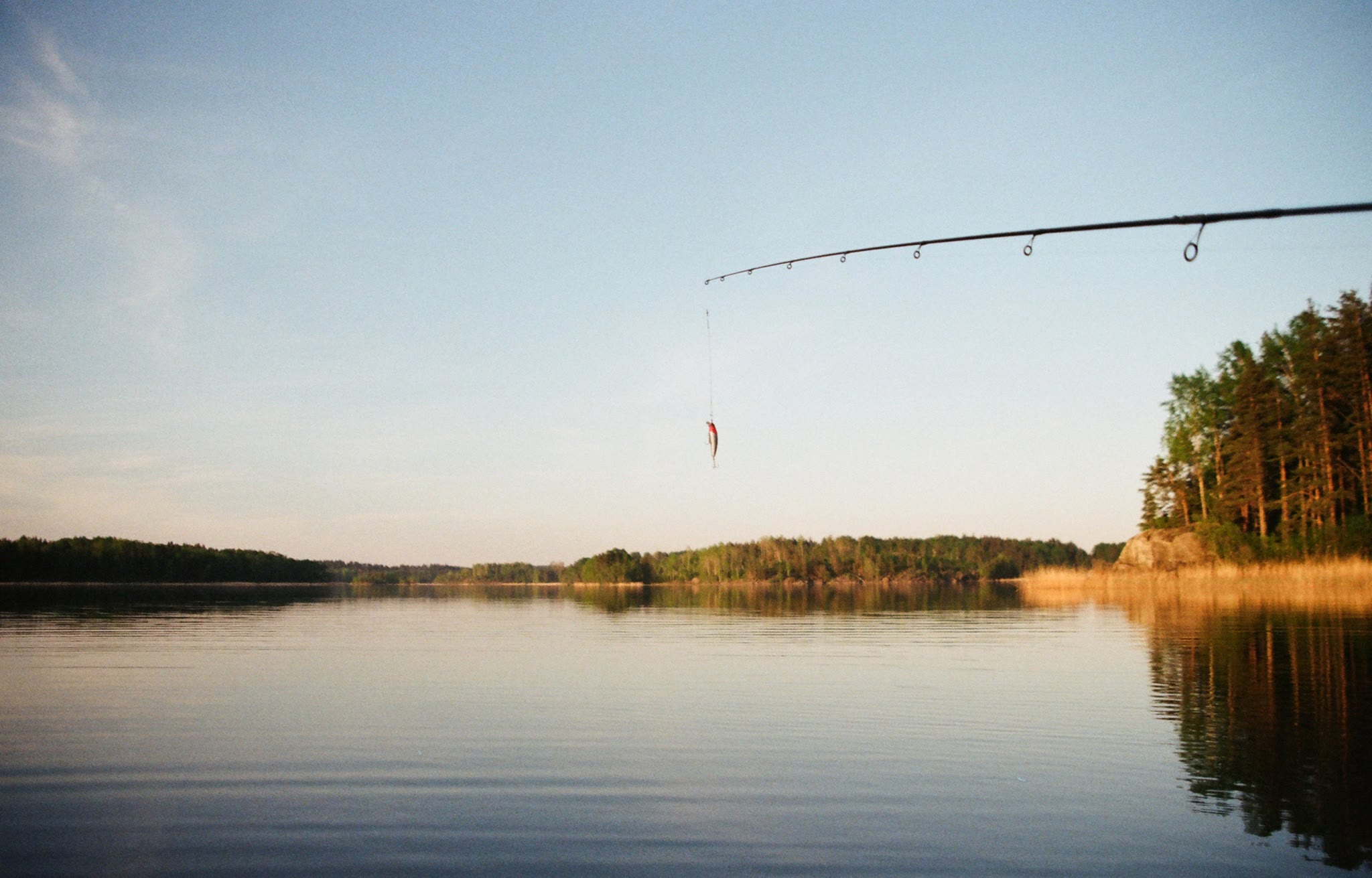 fishing poll hanging over the water
