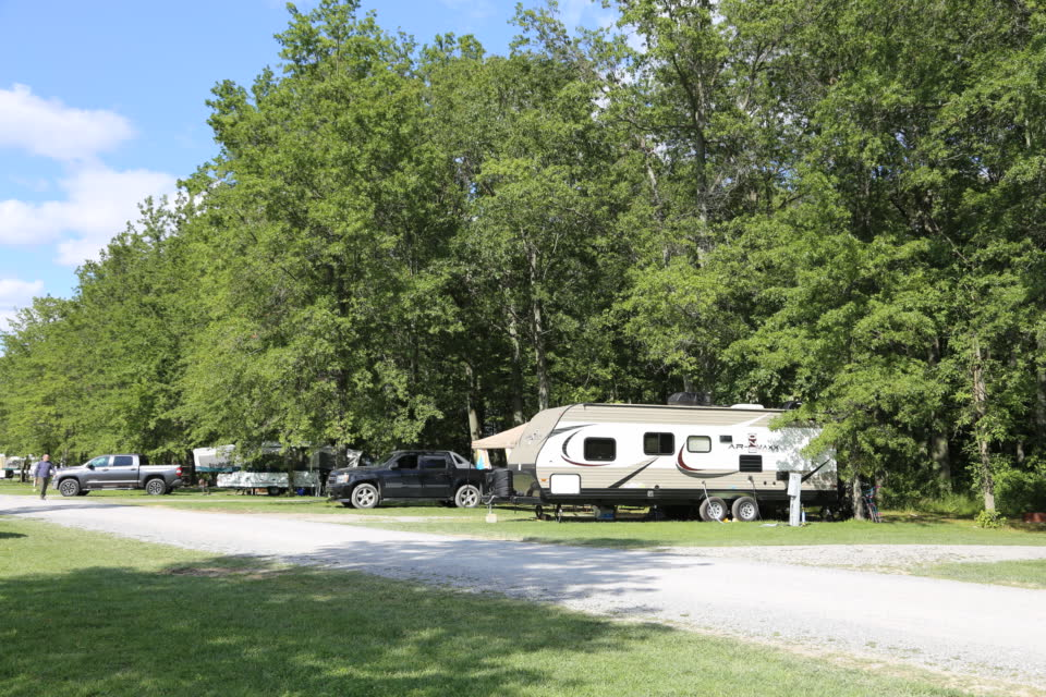travel trailer parked under trees on campsite