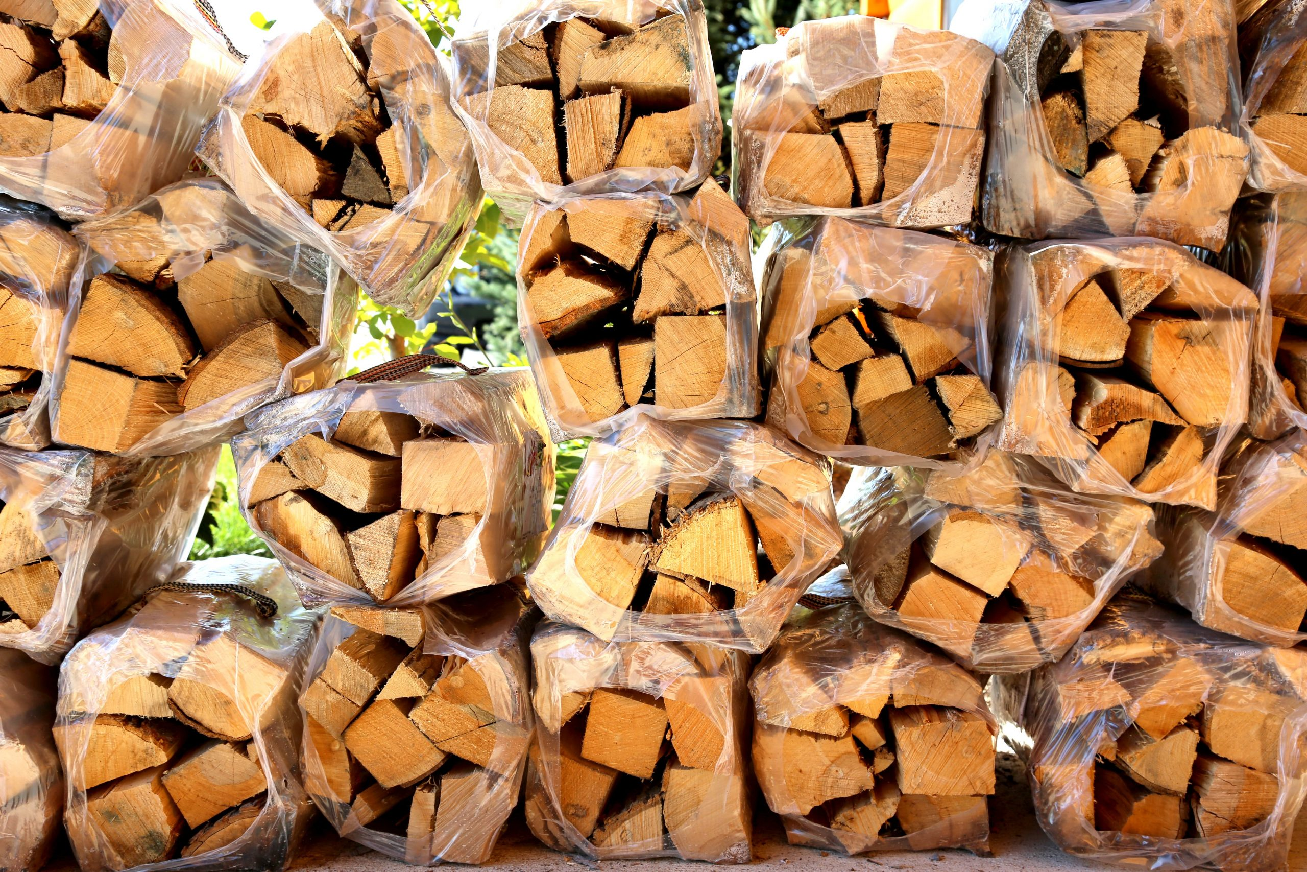 bundles of firewood