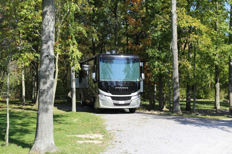 Motorhome parked under trees on campsite