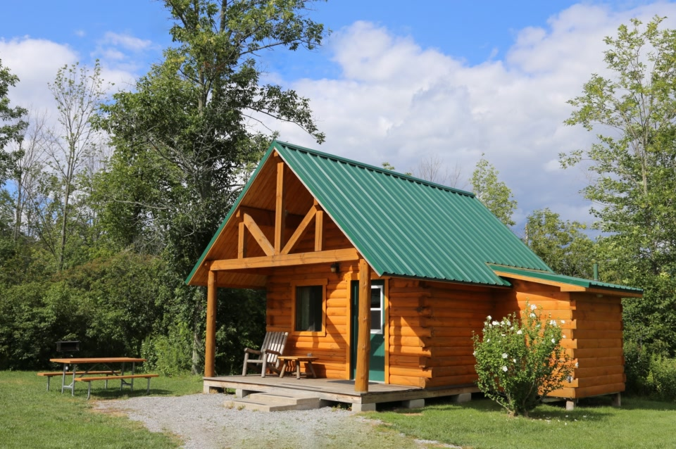 standard plus log cabin with trees and bushes