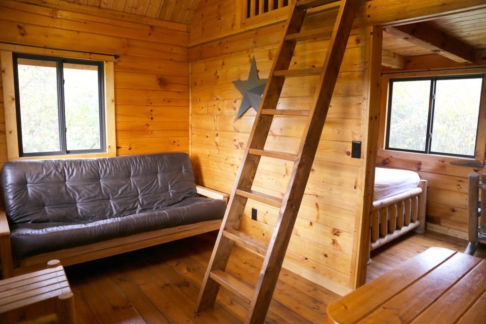 standard plus cabin with futon and ladder to loft